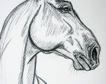 """Original charcoal horse prep drawing """"Bay Cob"""" A2 on paper"""