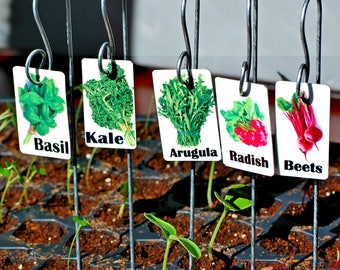 Garden Variety Plant Markers