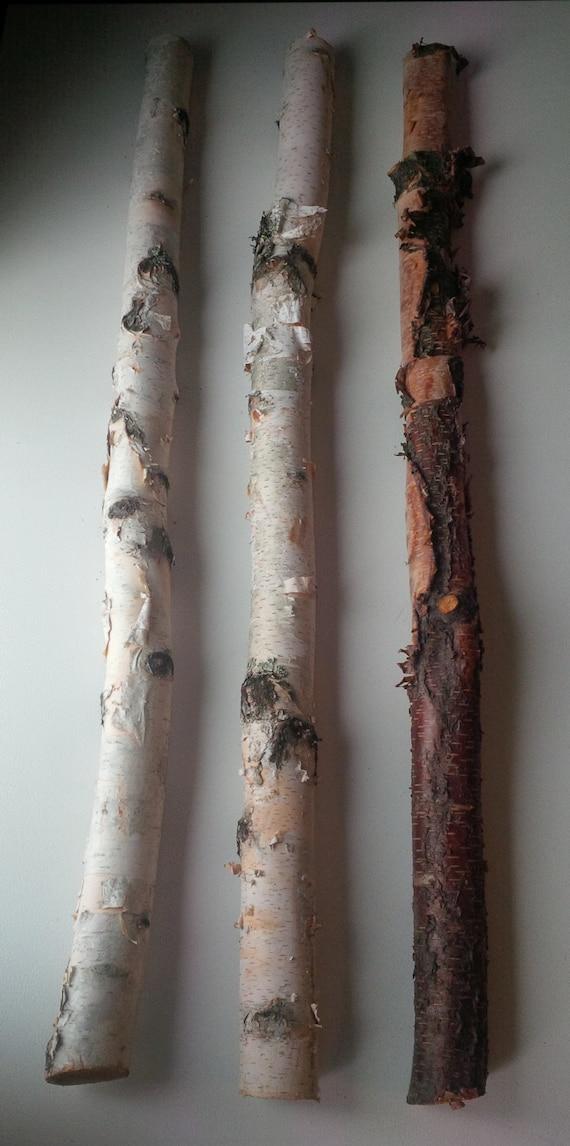 Birch Wood Logs ~ Birch stick bundles white arrangement natural wood