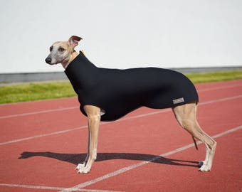 Neoprene whippet coat
