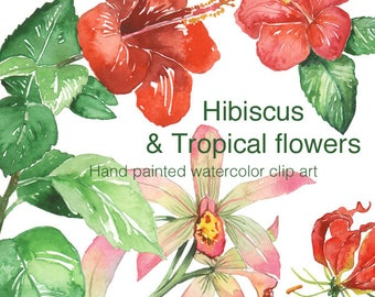 Hibiscus and tropical flower clip art, Watercolor clipart, Printable exotic flowers, Orchid, Hibiscus leaves, Hand painted Hawaiian flowers