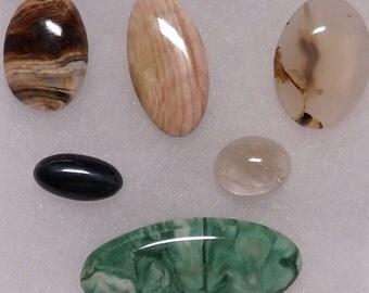 Box 1 of Cabochons, Green Marble, Blue Tiger Eye, Petrified Wood, Moss Agate, Lt Jasper & Smokey Quartz