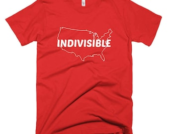 Indivisible Protest Shirt