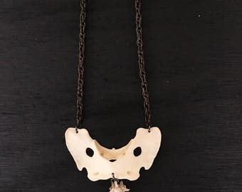 Coyote and Rattlesnake Vertebrae Necklace