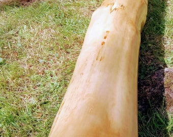 Hand crafted Sycamore F# didgeridoo