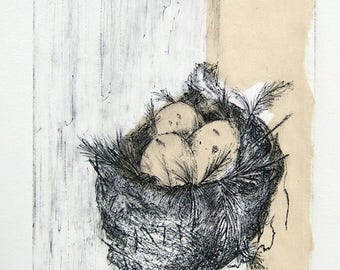 NEST  3/15    -    original fine art print,  inviting egg filled nest etching, delicate hand rubbed lines