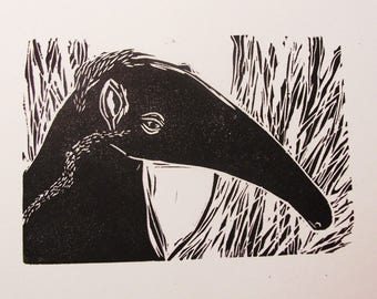 Anteater hand pulled black and white original linocut