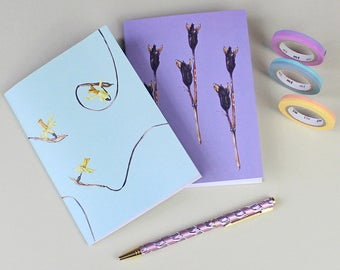 Botanical Notebooks gift set-gift for Mothers day-gift for Easter-Floral notebooks-Tete a Tete daffodil print-Iris seed pod Watercolour