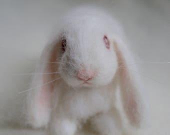 Lop Eared Bunny Needle Felted Rabbit, White Albino, Luxury Pet