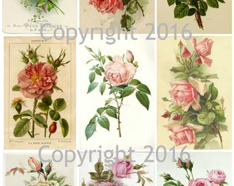 Printable French Roses Collage Sheet #2.  Instant Digital Download,  Flowers, Scrapbook Embellishments
