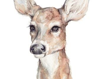 Deer Watercolor  • 5x7, 8x10, 11x14 Giclée Print • Forest Friends Series • Nature Art