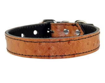 Brown Ostrich Dog Collar - Genuine Leather Dog Collar - Brown Leather Collar - Ostrich Brown Dog Collar With Nickle Hardware - Made In USA