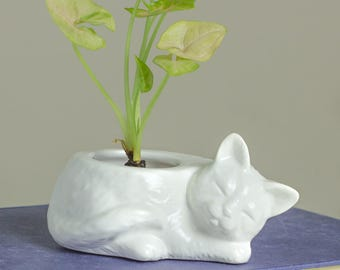 White Kitty planter, ceramic succulent planter, handmade pottery planter, Ceramic plant pot, cat lover gift Spring gardening