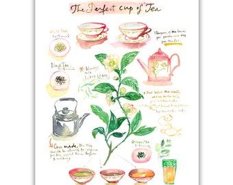 The perfect cup of tea, Watercolor tea print, Tea poster, Watercolor painting, Kitchen decor, Watercolor art, Teapot illustration, Tea plant
