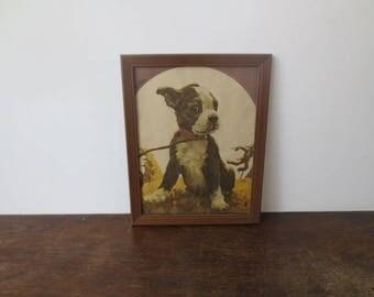 Vintage '30s Framed Pit Bull Puppy Print, Scarecrow & Bat