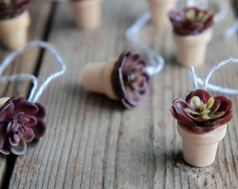Miniature Succulent Ornament - Small Easter Tree Ornaments - Miniature Plant Ornaments - Small Succulent Ornaments - Small Tree Ornaments