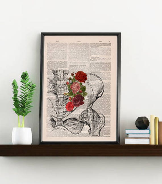 Springtime Pelvis Decorative Art, Flowers on Skull ,Nature Inspired Print, Decorative Art, Wall hanging print, Plevis Art flowers SKA136