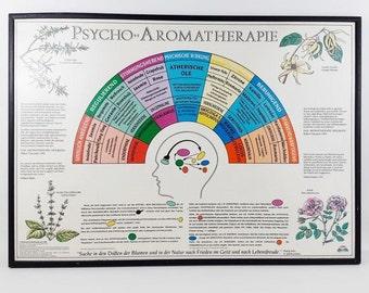Vintage Aromatherapy Botanical Educational Chart Poster Map Framed