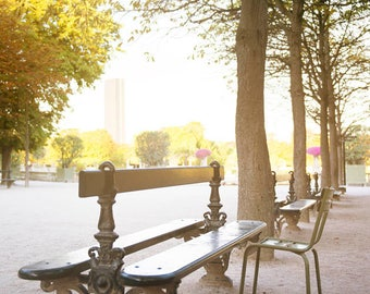 Paris travel print Luxembourg Garden photo Wood bench in Garden image Mint green chair Paris image Autumn leaves Fall in Paris gift under 50