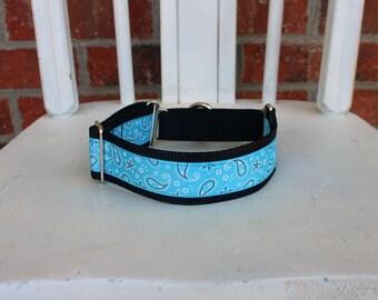Greyhound Martingale - Light Blue Paisley