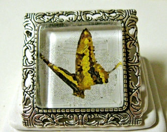 Butterfly convertible pendant or brooch with chain - WAP35-011