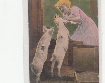 "Lovely Lady In Pink With Her Two Pigs ""I Know What  You Want, But You Won't Get It-C 1908-Antique Postcard"
