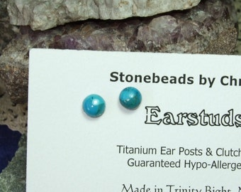 6mm Real Turquoise Titanium Ear Posts Backings Friendship Studs Post Earrings Earings Hypo Allergenic