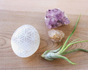 Sacred Geometry Flower of Life etched Selenite meditating palm stone