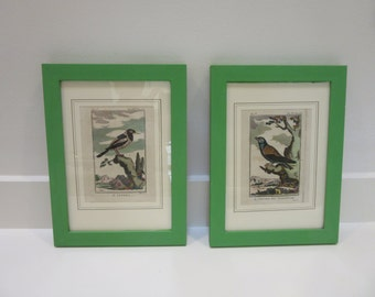 Pair of Bird Bookplates in Palladium Green Painted Frames