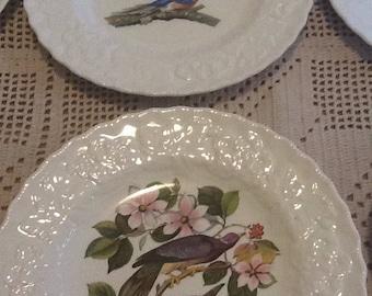 "Vintage Meakin England, Audubon,  Birds of America 8 3/4"" Luncheon Plates, set of 8"