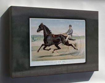 Canvas 24x36; Jay Eye See Celebrated Trotter Jay Eye See, Driven By Ed. Bithers