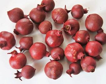 Dried whole pomegranates fruits, 100g bag, naturally dried pomegrnates, shabby , rustic decor fruit, various sizes