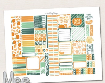 Printable planner stickers for use in mini Happy planner,Tangerine fresh start weekly sticker kit,January planner stickers,New beginning