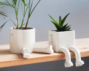 Pack 2 planters. 1 Sitting and 1 Sprawled. 10% off !