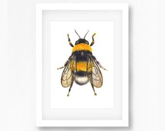 Bee Watercolor