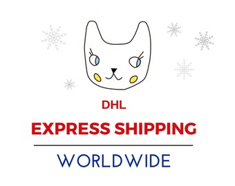 Express holiday shipping, DHL express delivery service,  delivery worldwide, international shipping in 2-5 days