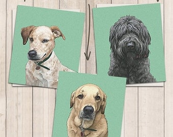THREE INDIVIDUAL PORTRAITS. Detailed Pet Portraits. Personalized pets portrait. Portrait drawing. Custom illustration. Bespoke illustration.
