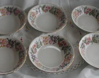 "Paragon Fine Bone China ""Country Lane"" Design Set of Six Pudding Bowls"