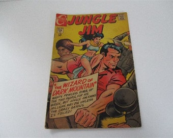 Vintage Charlton Comics Jungle Jim Comic Book No. 22 1969
