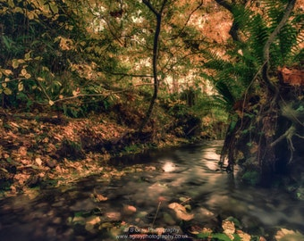 Blank 7x5 greeting card - the stream, hythe, kent