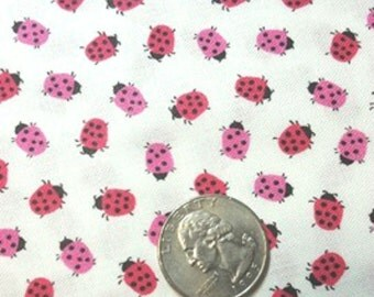 Timeless Treasures - Mini Ladybugs MINI-C1043-WHITE  **Half Yard Cuts**