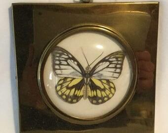 Vintage Brass Framed Butterfly Japan