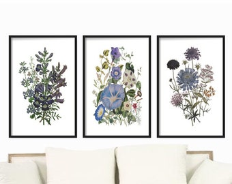Blue Botanical Prints Set of 3 prints, Wall Art Botanical Prints set , Art Prints, Antique Botanical Prints, Posters, Blue Floral Wall Art