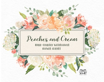 Flower Watercolour Clipart, Hand Painted Graphics - Peaches and cream. Digital graphic download with leaves, roses, peonies and hydrangeas.