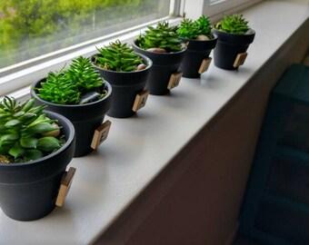 Mini pots with faux succulents