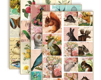 Art Sheets - Nature (woodland animals, flowers, birds, etc)