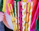 Pineapple Flamingo Paper Straw Mix. Luau Birthday or Tropical Bachelorette Party. Pineapple Bar Cart Accessory. Tiki Hut Cake Pop Sticks