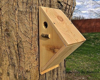 Backyard feeder etsy for Types of birdhouses for birds