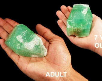 Emerald Green Calcite 2 1/2 Inch 4-7 Oz Rough Rocks and Minerals Heart Chakra Healing Crystals and Stones Raw Natural Mineral Specimen