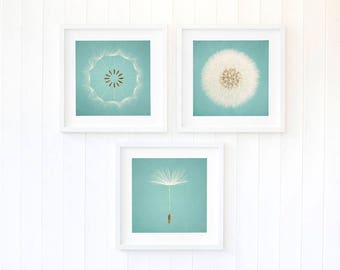 Blue dandelion wall art, dandelion seeds wall art, duck egg decor, nursery decor ideas for boys, set of three large prints bedroom decor